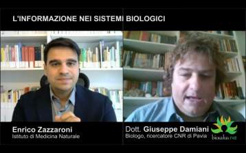 L'informazione nei sistemi biologici