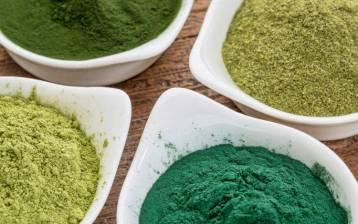 Alghe: un cibo antico per il futuro