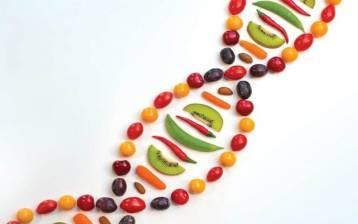 Mangia come i tuoi antenati: sono i Geni che te lo chiedono!